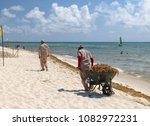 workers clean a tropical beach... | Shutterstock . vector #1082972231