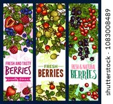 berry sketch banner of wild and ...   Shutterstock .eps vector #1083008489