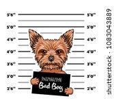 yorkshire terrier dog bad boy.... | Shutterstock .eps vector #1083043889