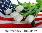 Tulips On Flag