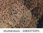 macro photography of mahogany... | Shutterstock . vector #1083373391