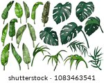 vector tropical palm leaves set ... | Shutterstock .eps vector #1083463541