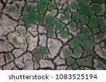 grass on cracked ground | Shutterstock . vector #1083525194