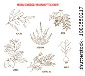 best herbs for dandruff... | Shutterstock .eps vector #1083550217