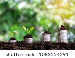 financial growth  stacking... | Shutterstock . vector #1083554291