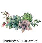 watercolor succulent bouquet... | Shutterstock . vector #1083595091