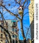 Small photo of New York City Manhattan urban birdcage hanging from tree in harlem