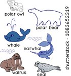 Set of different cartoon animals of polar fauna on white background with titles