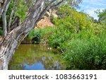 australian outdoor natural... | Shutterstock . vector #1083663191