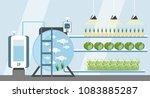 growing plants in the... | Shutterstock .eps vector #1083885287
