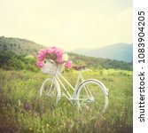 Retro White Bicycle On Grass I...