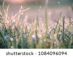 sunrise and droplets of morning ... | Shutterstock . vector #1084096094