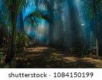 morning light in a jungle garden | Shutterstock . vector #1084150199