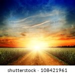 road in field with ripe yellow... | Shutterstock . vector #108421961