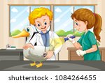 vets examining health of a duck ... | Shutterstock .eps vector #1084264655