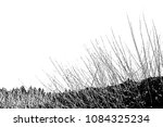 realistic grass silhouettes ... | Shutterstock .eps vector #1084325234