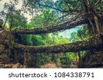 living roots bridge formed by...   Shutterstock . vector #1084338791