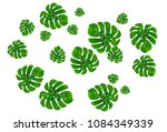 vector summer tropical pattern... | Shutterstock .eps vector #1084349339