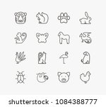 zoo icon set and dragon with...