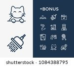 service icon set and pet...