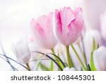 Spring Bouquet Of Pink And...
