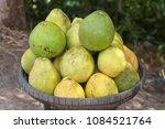 heap of pomelo  citrus maxima ... | Shutterstock . vector #1084521764