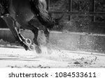 horse legs during a dinamic... | Shutterstock . vector #1084533611