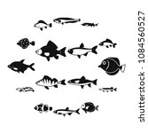 cute fish icons set in simple... | Shutterstock .eps vector #1084560527