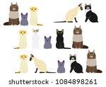 cute cats border set | Shutterstock .eps vector #1084898261