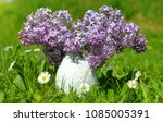 vase with blooming purple lilac ... | Shutterstock . vector #1085005391
