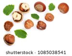 Hazelnuts With Leaves With Cop...