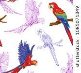 seamless pattern  background ... | Shutterstock .eps vector #1085071349