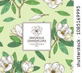 background with magnolia... | Shutterstock .eps vector #1085169995