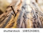 a nail in the bark of a tree | Shutterstock . vector #1085243801