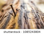 a nail in the bark of a tree | Shutterstock . vector #1085243804