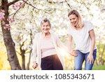 elderly grandmother with crutch ...   Shutterstock . vector #1085343671