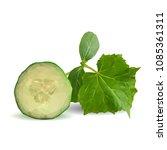 fresh  nutritious  tasty green... | Shutterstock .eps vector #1085361311