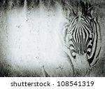 wild animal zebra old grunge paper texture background - stock photo