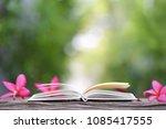 pink plumaria flower and... | Shutterstock . vector #1085417555