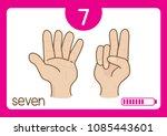 Flashcard Number   7