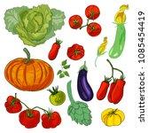 fresh vegetable. pumpkin ... | Shutterstock .eps vector #1085454419