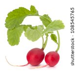 Small garden radish with leaves isolated on white background cutout - stock photo