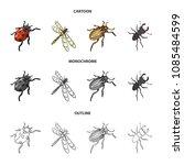 arthropods insect ladybird ... | Shutterstock .eps vector #1085484599