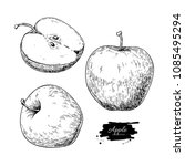 apple vector drawing. hand...   Shutterstock .eps vector #1085495294