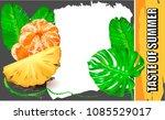 vector pineapple.vector...   Shutterstock .eps vector #1085529017