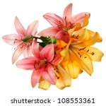Stock photo flowers pattern pink and orange lilies isolated on white 108553361