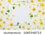 yellow flowers on white... | Shutterstock . vector #1085548715