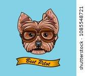 yorkshire terrier pilot.... | Shutterstock .eps vector #1085548721