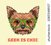 yorkshire terrier geek. smart... | Shutterstock .eps vector #1085548937