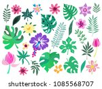beautiful big  set with... | Shutterstock .eps vector #1085568707